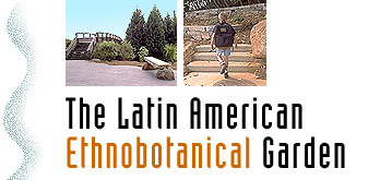 The Latin American Ethnobotanical Garden