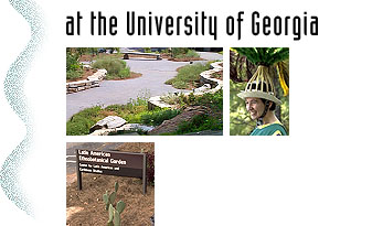 at the University of Georgia